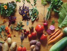 Plaquette 2019 Carrefour Agroécologique de L'Ouest
